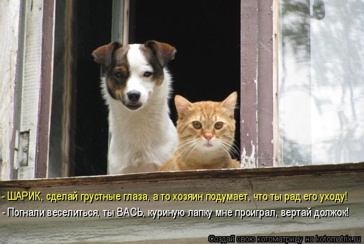 http://kotomatrix.ru/images/lolz/2015/12/02/M.jpg