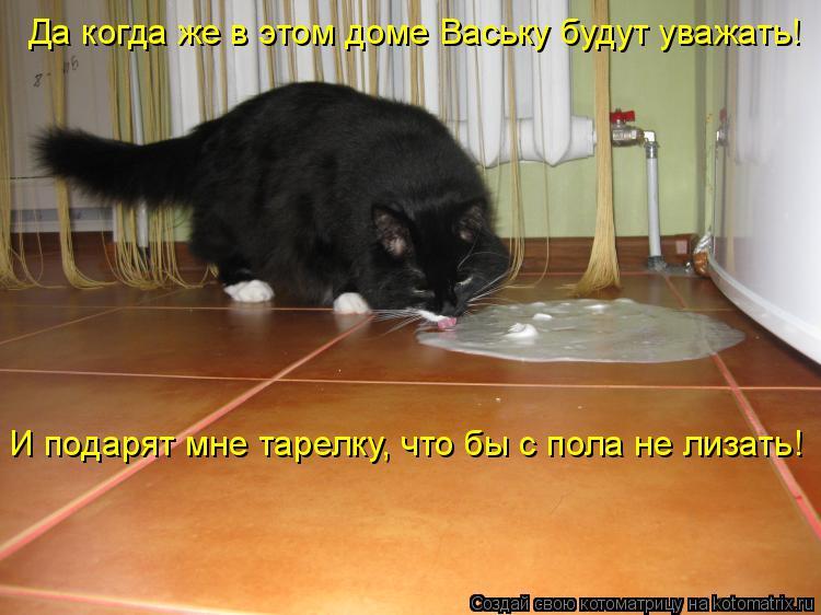 Котоматрица: Да когда же в этом доме Ваську будут уважать!  И подарят мне тарелку, что бы с пола не лизать!