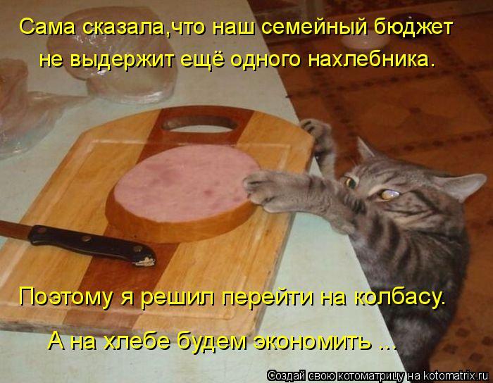 Котоматрица: Сама сказала,что наш семейный бюджет не выдержит ещё одного нахлебника. Поэтому я решил перейти на колбасу.  А на хлебе будем экономить ...