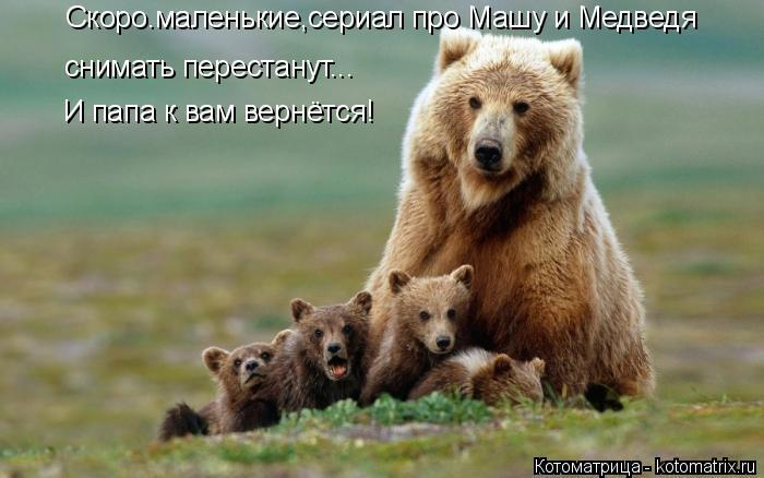 Котоматрица: Скоро.маленькие,сериал про Машу и Медведя снимать перестанут... И папа к вам вернётся!