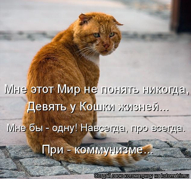 Котоматрица: Мне этот Мир не понять никогда, Девять у Кошки жизней...  Мне бы - одну! Навсегда, про всегда. При - коммунизме...