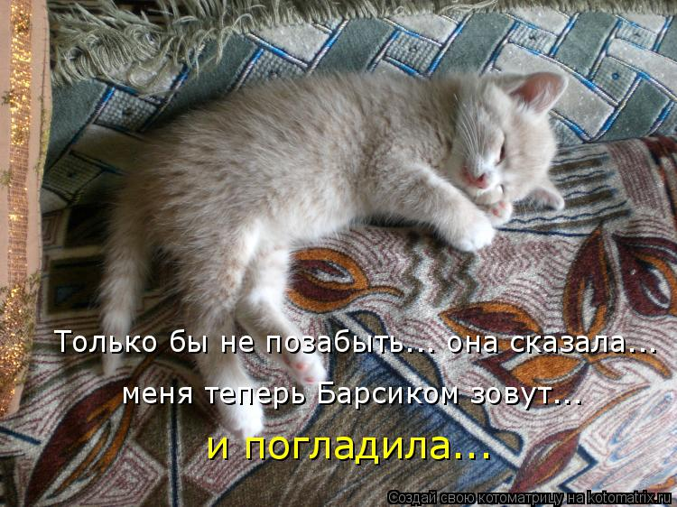 http://kotomatrix.ru/images/lolz/2015/12/08/kotomatritsa_1n.jpg