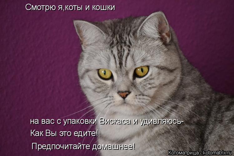 Котоматрица: Смотрю я,коты и кошки на вас с упаковки Вискаса и удивляюсь- Как Вы это едите! Предпочитайте домашнее!