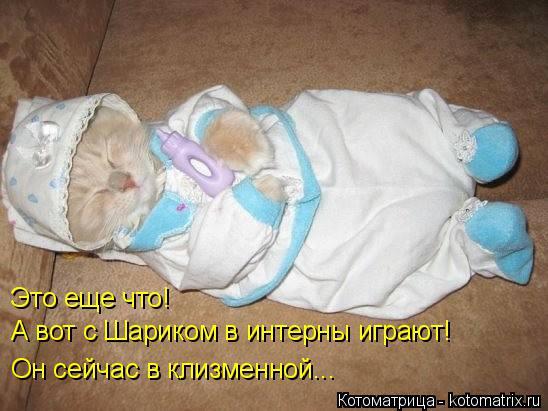 http://kotomatrix.ru/images/lolz/2015/12/08/kotomatritsa_lp.jpg