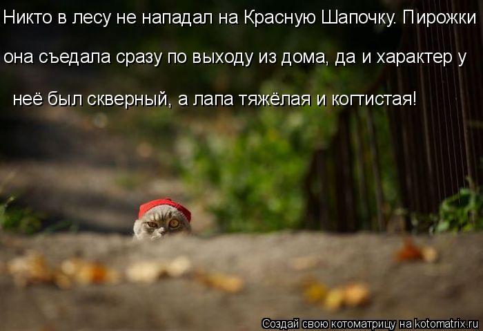 Котоматрица: Никто в лесу не нападал на Красную Шапочку. Пирожки неё был скверный, а лапа тяжёлая и когтистая! она съедала сразу по выходу из дома, да и ха