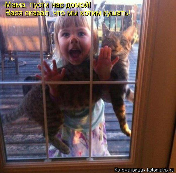 Котоматрица: -Мама, пусти нас домой!  Вася сказал, что мы хотим кушать!