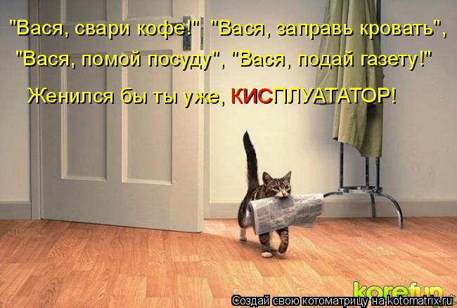 """Котоматрица: """"Вася, свари кофе!""""  """"Вася, заправь кровать"""",  """"Вася, помой посуду"""", """"Вася, подай газету!"""" Женился бы ты уже, КИСПЛУАТАТОР! КИС"""