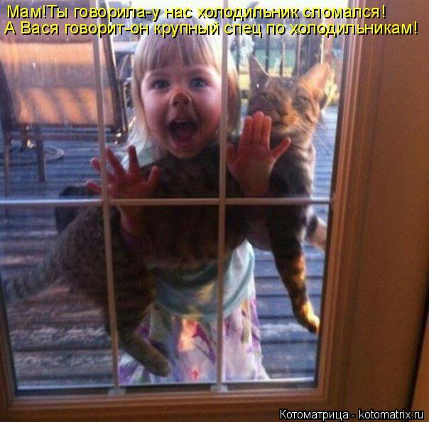 Котоматрица: А Вася говорит-он крупный спец по холодильникам! Мам!Ты говорила-у нас холодильник сломался!