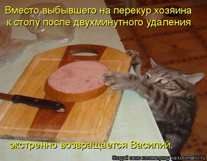 Котоматрица: Вместо выбывшего на перекур хозяина к столу после двухминутного удаления экстренно возвращается Василий.