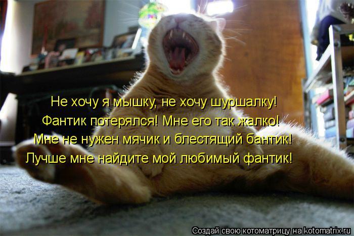 Котоматрица: Не хочу я мышку, не хочу шуршалку! Фантик потерялся! Мне его так жалко! Мне не нужен мячик и блестящий бантик! Лучше мне найдите мой любимый ф