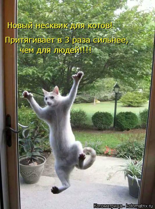 Котоматрица: Новый несквик для котов! Притягивает в 3 раза сильнее, чем для людей!!!!