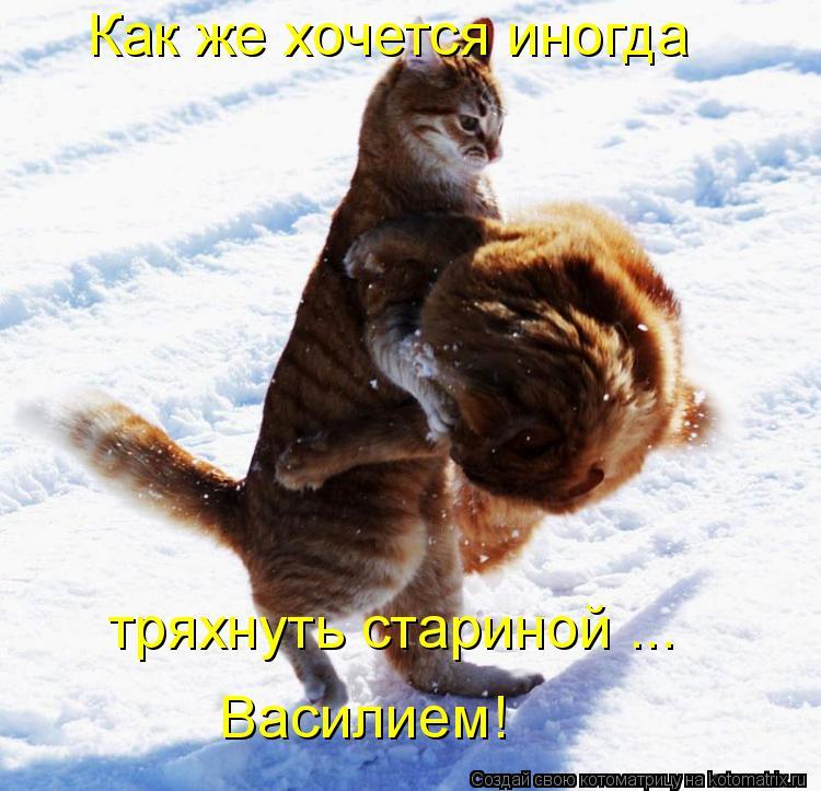 Котоматрица: Как же хочется иногда тряхнуть стариной ... Василием!
