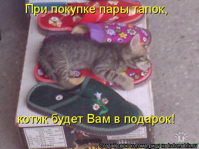 Котоматрица: При покупке пары тапок,  котик будет Вам в подарок!