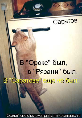 """Котоматрица: Саратов в """"Рязани"""" был. В """"Орске"""" был,  В """"Саратове"""" еще не был."""