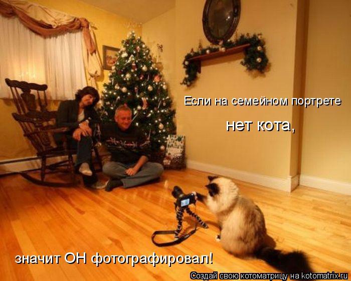 Котоматрица: Если на семейном портрете нет кота, значит ОН фотографировал!