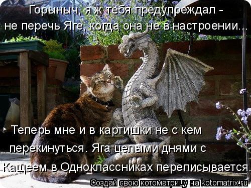 Котоматрица: Горыныч, я ж тебя предупреждал - не перечь Яге, когда она не в настроении... Кащеем в Одноклассниках переписывается. перекинуться. Яга целыми