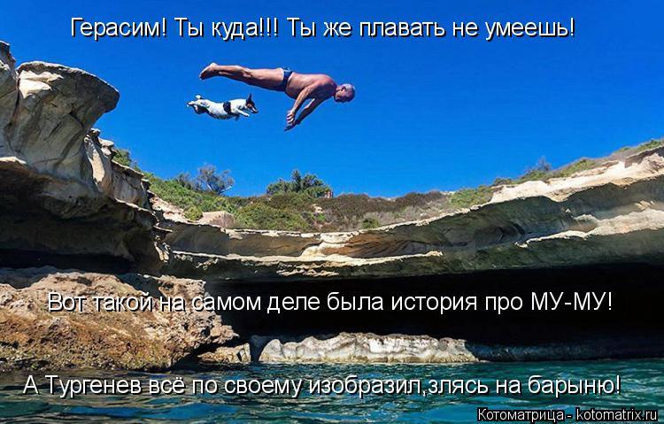 Котоматрица: Герасим! Ты куда!!! Ты же плавать не умеешь! Вот такой на самом деле была история про МУ-МУ! А Тургенев всё по своему изобразил,злясь на барыню!