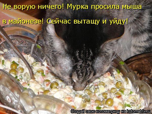 Котоматрица: Не ворую ничего! Мурка просила мыша  в майонезе! Сейчас вытащу и уйду!