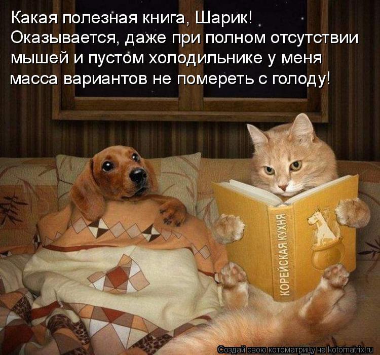 Котоматрица: Какая полезная книга, Шарик! Оказывается, даже при полном отсутствии мышей и пустом холодильнике у меня  масса вариантов не помереть с голо