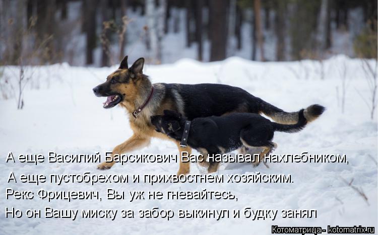 Котоматрица: А еще Василий Барсикович Вас называл нахлебником, А еще пустобрехом и прихвостнем хозяйским. Рекс Фрицевич, Вы уж не гневайтесь, Но он Вашу