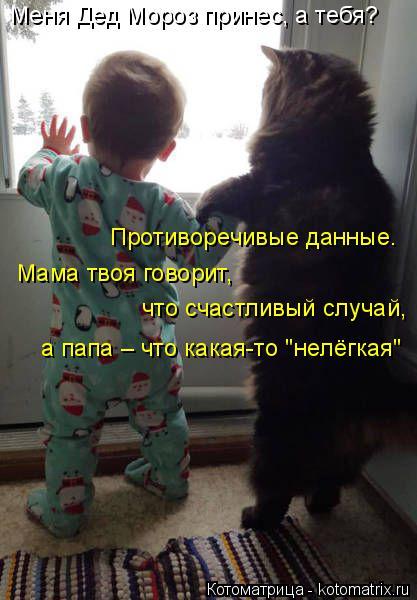 """Котоматрица: Меня Дед Мороз принес, а тебя? Противоречивые данные. Мама твоя говорит,  что счастливый случай, а папа – что какая-то """"нелёгкая"""""""