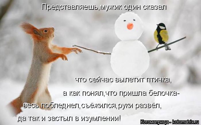 Котоматрица: Представляешь,мужик один сказал что сейчас вылетит птичка, а как понял,что пришла белочка- весь побледнел,съёжился,руки развёл, да так и зас