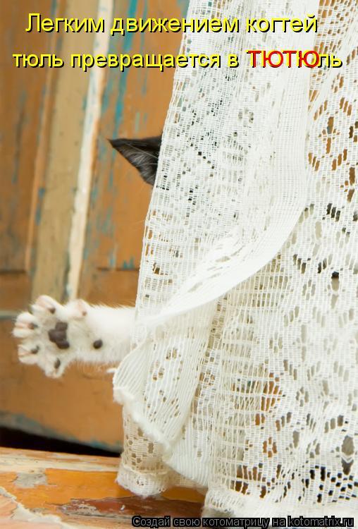 Котоматрица: Легким движением когтей тюль превращается в ТЮТЮль ТЮТЮ