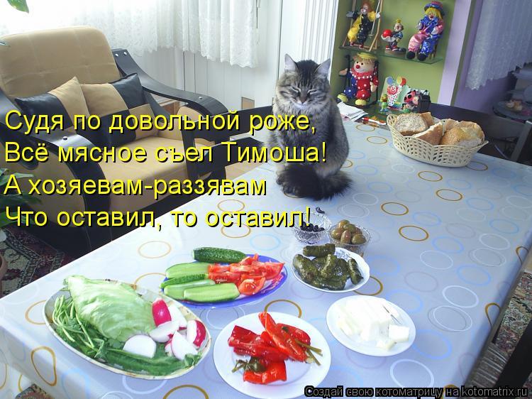 Котоматрица: Судя по довольной роже, Всё мясное съел Тимоша! А хозяевам-раззявам Что оставил, то оставил!