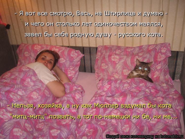 http://kotomatrix.ru/images/lolz/2015/12/28/kotomatritsa_A.jpg
