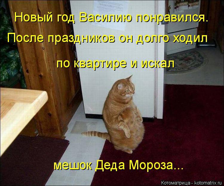 Котоматрица: Новый год Василию понравился.  После праздников он долго ходил по квартире и искал мешок Деда Мороза...