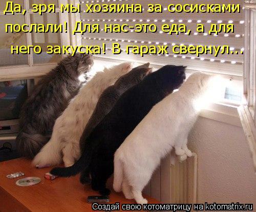Котоматрица: Да, зря мы хозяина за сосисками  послали! Для нас-это еда, а для  него закуска! В гараж свернул...