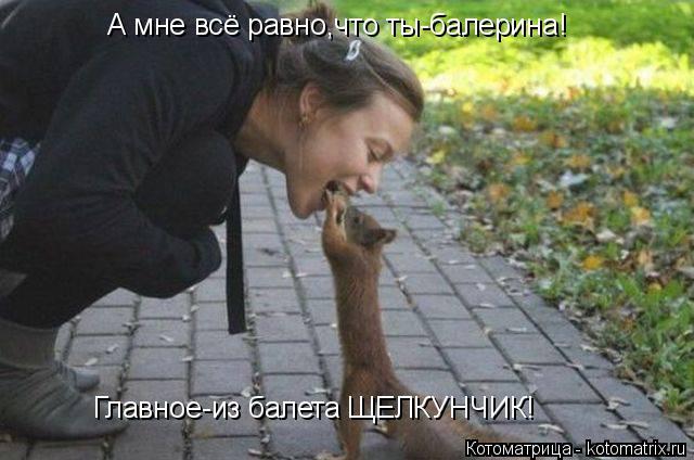 Котоматрица: А мне всё равно,что ты-балерина! Главное-из балета ЩЕЛКУНЧИК!