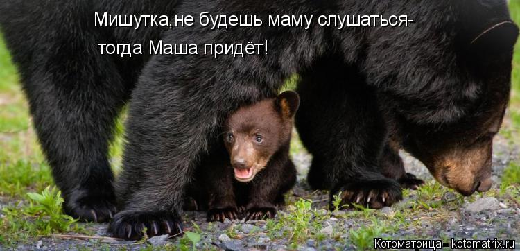 Котоматрица: Мишутка,не будешь маму слушаться- тогда Маша придёт!