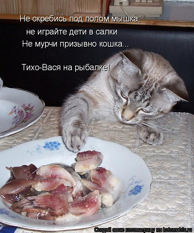 Котоматрица: Не скребись под полом мышка, не играйте дети в салки Не мурчи призывно кошка... Тихо-Вася на рыбалке!