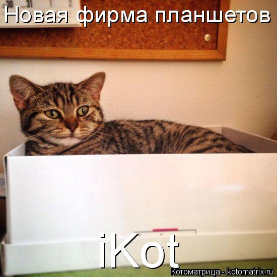 Котоматрица: Новая фирма планшетов iKot