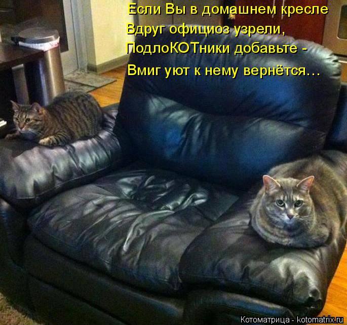 Котоматрица: Если Вы в домашнем кресле Вдруг официоз узрели, ПодлоКОТники добавьте - Вмиг уют к нему вернётся…