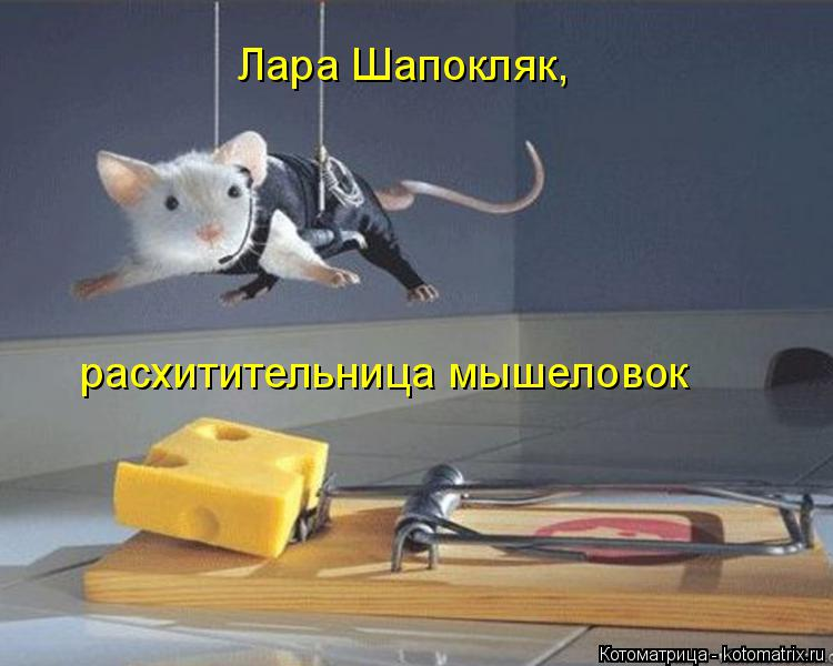 Котоматрица: Лара Шапокляк, расхитительница мышеловок