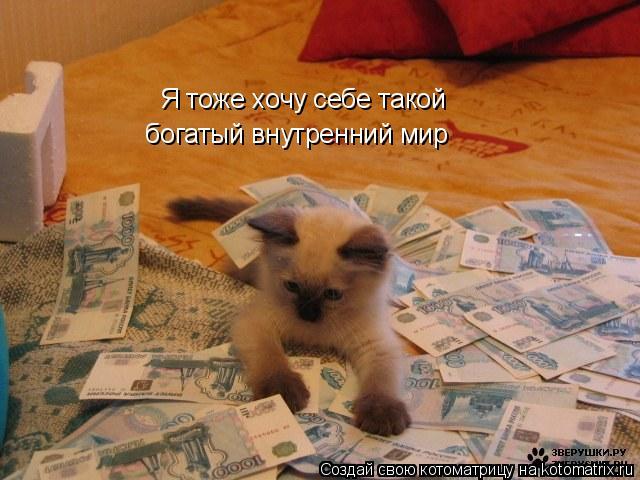 Котоматрица: Я тоже хочу себе такой богатый внутренний мир