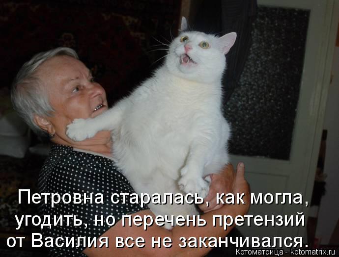 Котоматрица: Петровна старалась, как могла,  угодить, но перечень претензий  от Василия все не заканчивался.