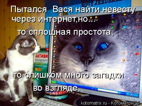 Котоматрица: Пытался  Вася найти невесту через интернет,но... то сплошная простота, то слишком много загадки во взгляде.