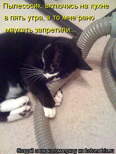 Котоматрица: Пылесосик, включись на кухне  в пять утра, а то мне рано  мяукать запретили...