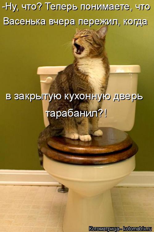 Котоматрица: -Ну, что? Теперь понимаете, что Васенька вчера пережил, когда в закрытую кухонную дверь тарабанил?!