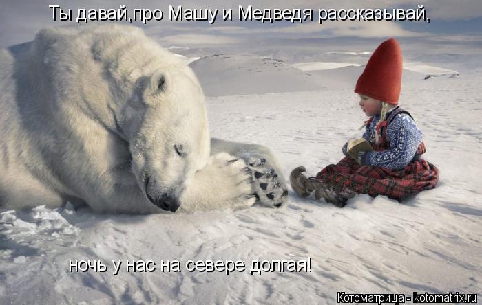 Котоматрица: Ты давай,про Машу и Медведя рассказывай, ночь у нас на севере долгая!