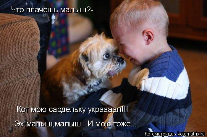 Котоматрица: Что плачешь,малыш?- Кот мою сардельку украааал!!! Эх,малыш,малыш...И мою тоже...