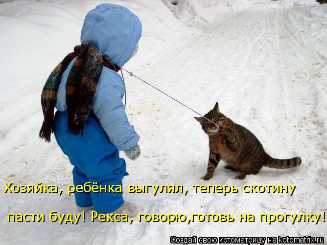 Котоматрица: Хозяйка, ребёнка выгулял, теперь скотину  пасти буду! Рекса, говорю,готовь на прогулку!