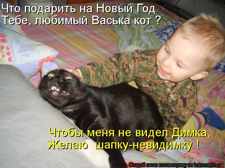 Котоматрица: Что подарить на Новый Год Тебе, любимый Васька кот ? Чтобы меня не видел Димка, Желаю  шапку-невидимку !