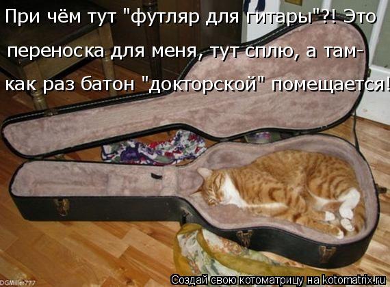 """Котоматрица: переноска для меня, тут сплю, а там- как раз батон """"докторской"""" помещается! При чём тут """"футляр для гитары""""?! Это"""