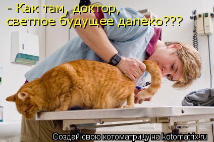 Котоматрица: - Как там, доктор, светлое будущее далеко???