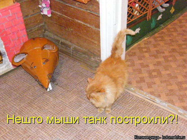 Котоматрица: Нешто мыши танк построили?!