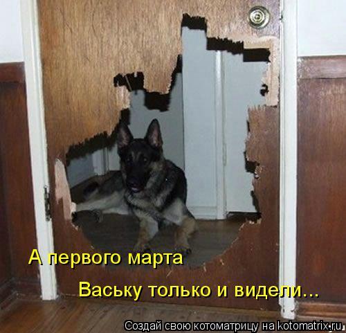 Котоматрица: А первого марта  Ваську только и видели...
